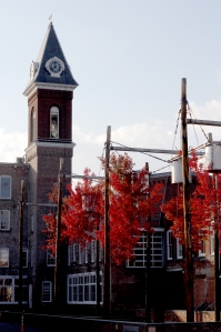 MM Clocktower Upside Down Trees Fall Image